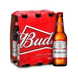 Pack Cerveja Budweiser Long Neck 330 mL
