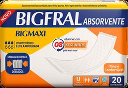 Absorvente Geriátrico Bigfral - 20 Und