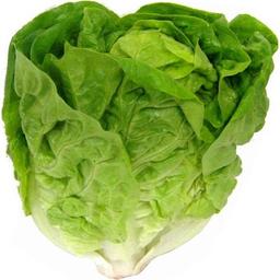 Alface Baby Romana Horácio Go Green 150 g