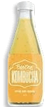 Bebida Kombucha Biozen Maçã / Canela 330 mL