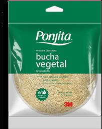 Esponja de Banho Vegetal Ponjita 1 U