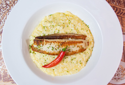 "Filet De Sole Garni De Risotto Au Brie À ""Sandro Chaim"""
