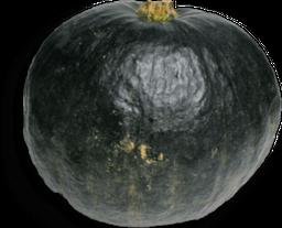 Abóbora Japonesa Vida Natural 350 g