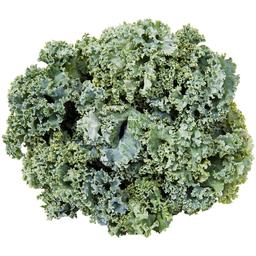 Couve Kale Usa Direto Da Serra Orgânica 150 g