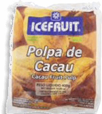 Polpa De Fruta Icefruit Cacau 1 Und