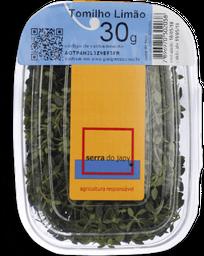 Tomilho Limão Serra Do Japy 30 g
