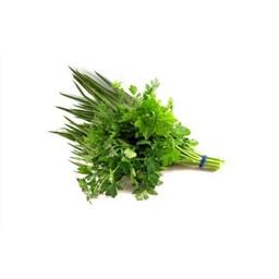 Cheiro Verde - Salsinha e Cebolinha Unidade