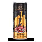 Cerveja Salzburg Evidências - 283410