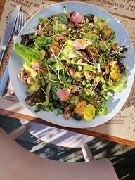 Salada III
