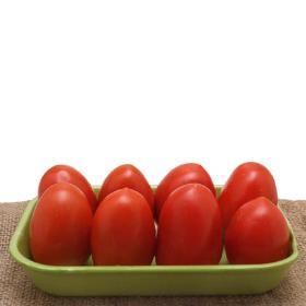 Tomate Italiano Orgânico Bio Vida 500 g