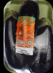 Berinjela Eco Vida Orgânica 500 g