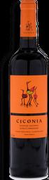 Vinho Tinto Português Ciconia Alentejo 750 mL