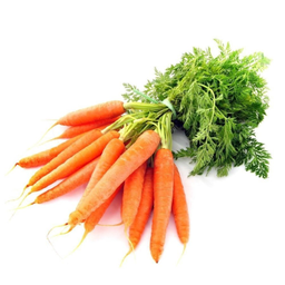 Cenoura Orgânica 600 g