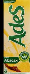 Bebida Vegetal De Castanha + Coco A Tal Da Castanha 1 L