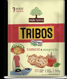 Snack Orgânico Tribos Tomate E Manjericão Mãe Terra 50 g