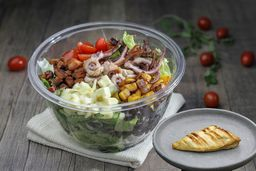 Monte Sua Salada Media + Proteína