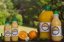 Suco Néctar de Maracujá - 450ml