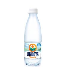 Água Lindoya verão 300ml sem Gás