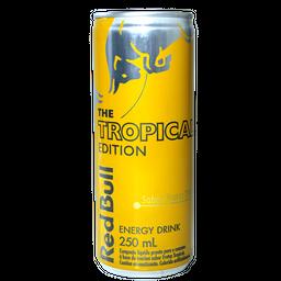 Energético Red Bull Edição Tropical Pack com 4 Latas de 250ml