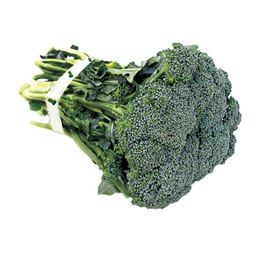 Brócolis Comum Maço