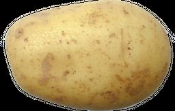 Batata Agata