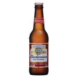 Cerveja Budweiser Long Neck 343 mL 6 Und