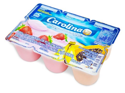 Carolina Bebida Láctea Salada de Frutas