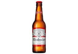 Cerveja budweiser ln 330 ml