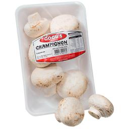Cogumelo Champignon Cogus