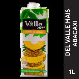 Del Valle de 1L