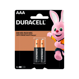 Pilha Aaa Duracell Palito 2 Und
