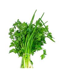 Cheiro Verde Hasegawa