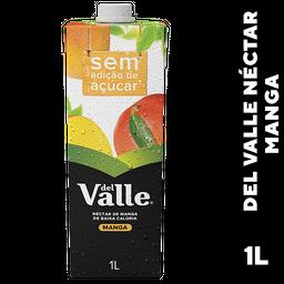 Suco De Manga Del Valle Sem Açúcar 1 L