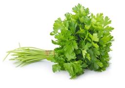Bio Vida Cheiro Verde Organico
