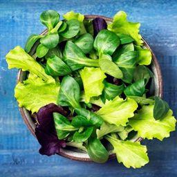 Monte sua Salada com Frango Orgânico