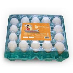 Ovos brancos 30 unidades