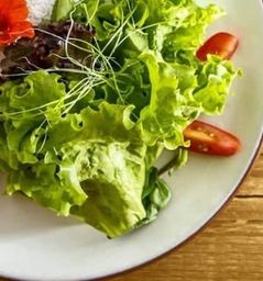Salada Mix de Folhas Orgânica Para Acompanhamento