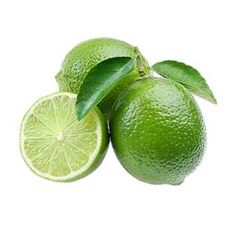 Limão Tahiti Okuma