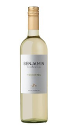 Vinho Benjamin Nieto Torrontés 750 mL