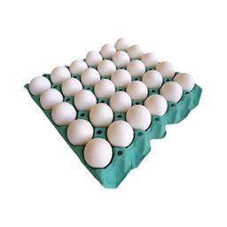 Chelmi Takahashi Ovos Brancos Granja