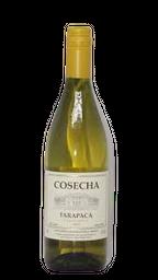 Vinho Cosecha Tarapacâ Chardonnay