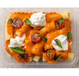 Rigatoni com Molho de Tomate MarmiPIPO