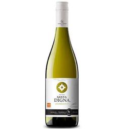 Miguel Torres Santa Digna Reserva Chardonnay