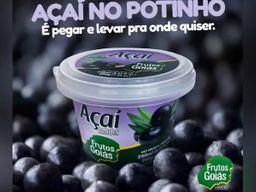 Açaí Zero Lactose no Potinho 250ml