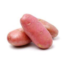 batata rosada asterix