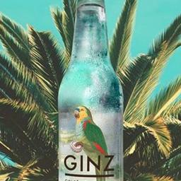 Ginz Gin Tônica Tropical - 355ml