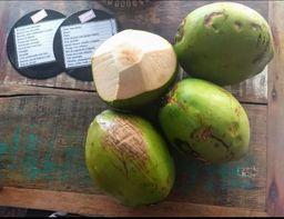 INCOMPLETO SEM ML - Agua de Coco Natural