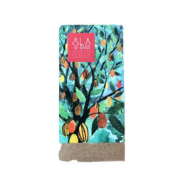 Chocolate 42% Ao Leite com Cacau Catongo, Avelã e Flor de Sal