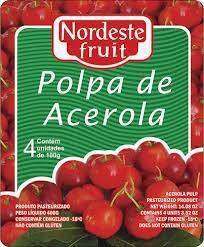 Polpa de Acerola Nordeste Fruit - 400g