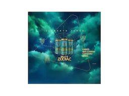 Skol Beats Zodiac Elements - Terra 269ml